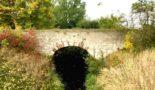 Gewässerrandstreifenprogramm entlang der Altenau